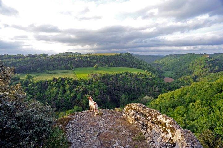 panorama, veduta da Pitigliano